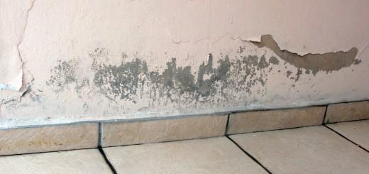 Elimina de una vez las humedades de tu hogar